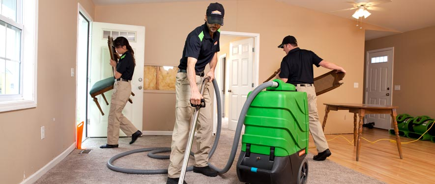 Livingston, TN cleaning services
